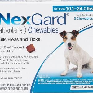 nexgard 10-24 lbs