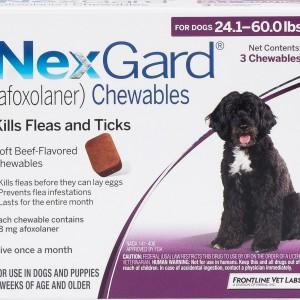 nexgard 24-60 lbs