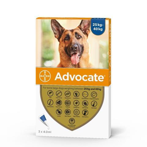 advocate-dog-25-40kg