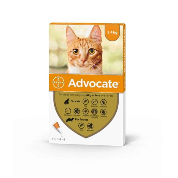 advocate-small-cat